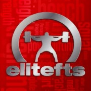 My complete program from March and April and notes are now online at the training website Elite FTS