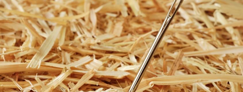 needle_haystack2