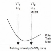 Polarized_Training