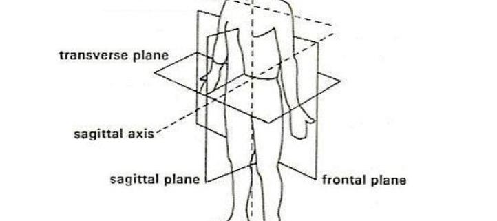 body-axes
