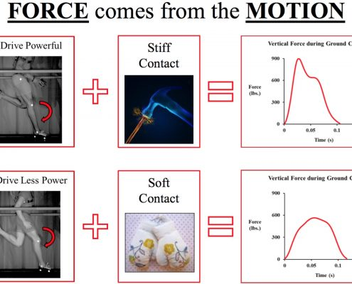 force_motion