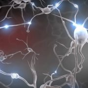 neurons-connection