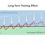 Lesson 11: Understanding adaptation
